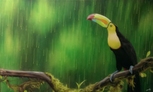 Graffiti Leinwand Tucan im Regen