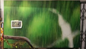 Graffiti Leinwand Entstehung Tucan im Regen